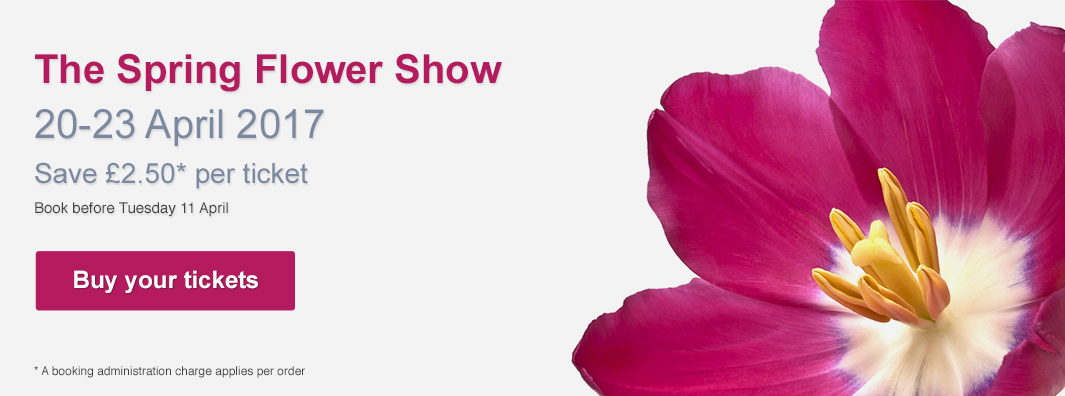 The Spring Flower Show