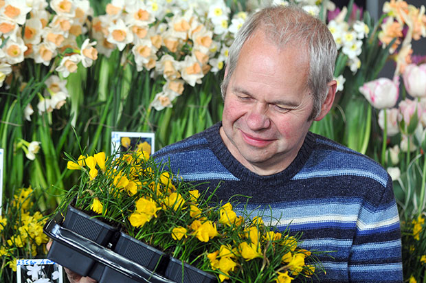 Nursery displays at Harrogate Flower Shows